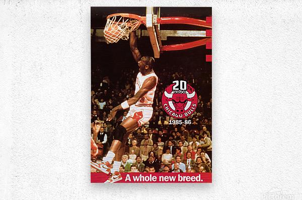 1985 Michael Jordan Dunk Poster Bulls 20th Anniversary  Metal print