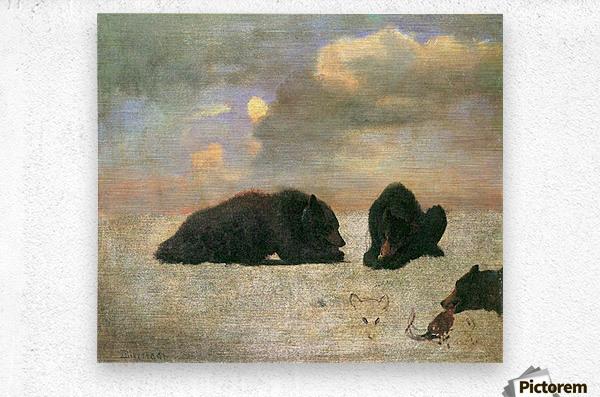 Grizzly Bears by Bierstadt  Metal print