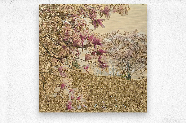 PInk Magnolia Tree  Metal print