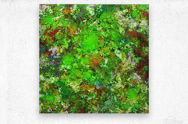 Slippery green rocks  Metal print