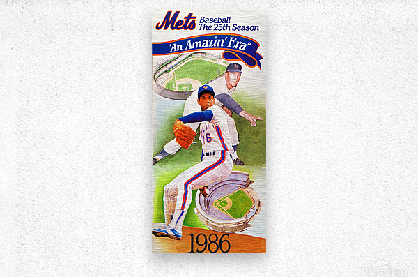 gifts for new york sports fans  Metal print