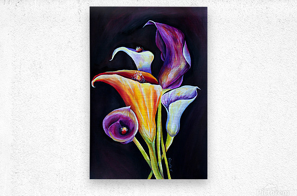 Calla Lilies in Blooming Bouquet  Metal print