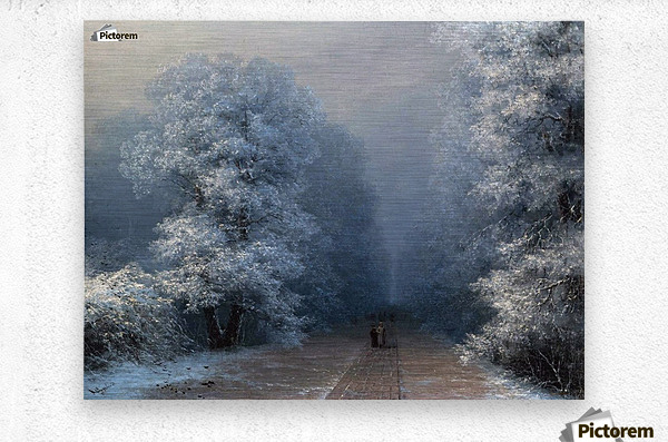 Winter landscape and alley  Metal print