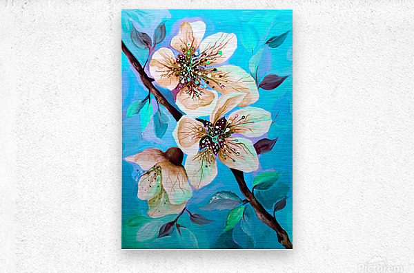 Japanese Sakura Cherry Blossom   Metal print