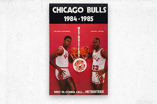 1984 chicago bulls michael jordan who ya gonna call netbusters poster  Metal print