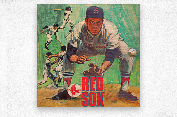 vintage boston red sox best metal sports signs for the garage  Metal print