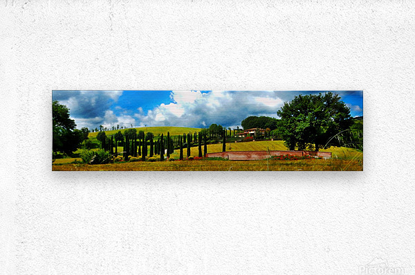 Cypress View Umbria  Metal print