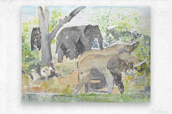 African Elephants 1  Metal print