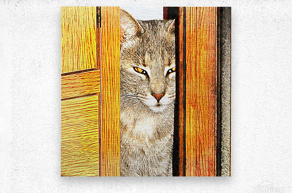 Looking From The Other Side  Metal print