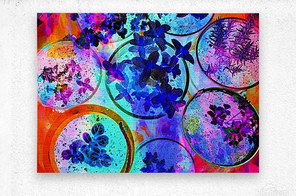 Psychedelic Herbs  Metal print
