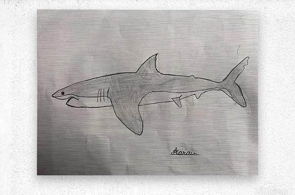 Shark Image  Metal print