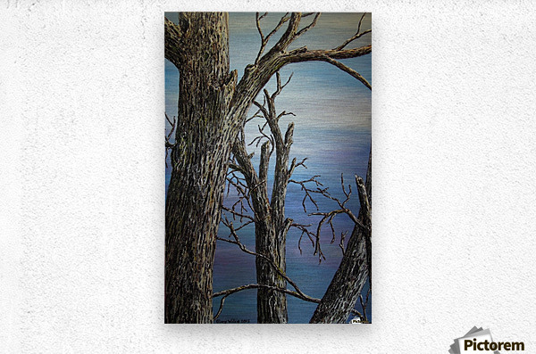 Blue Vista  Metal print