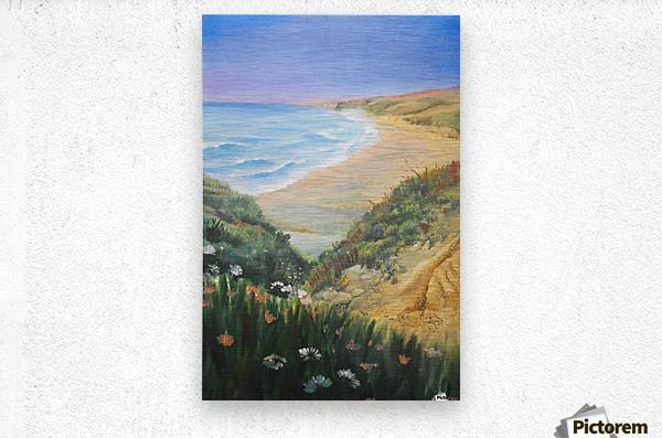 Ocean Shore Through The Hills  Metal print