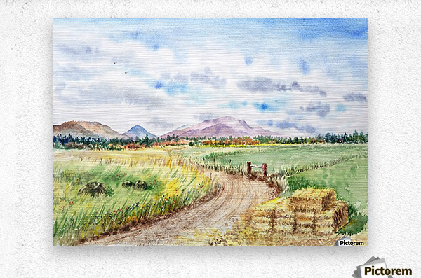 Farm Road The Mountains landsape  Metal print