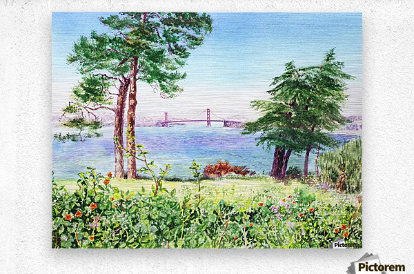 Golden Gate Bridge View From Lincoln Park San Francisco  Metal print
