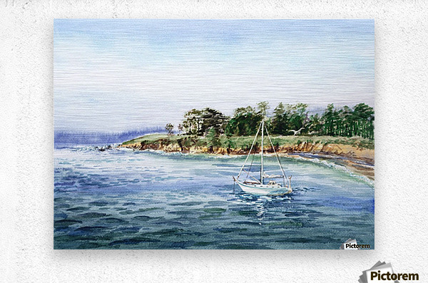 Sailboat At The Seashore  Metal print