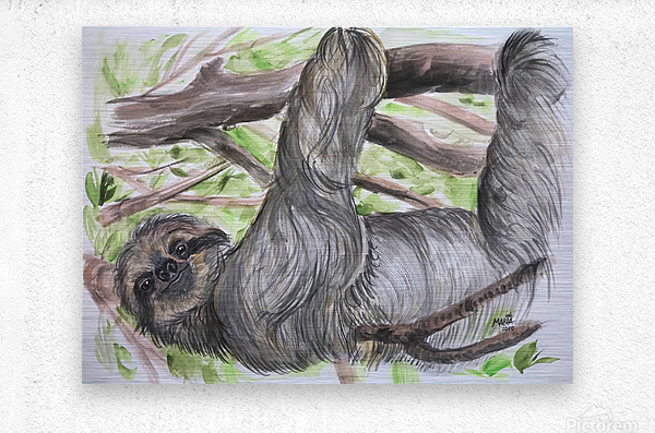 Collection COSTA RICA-Sloth  Impression metal