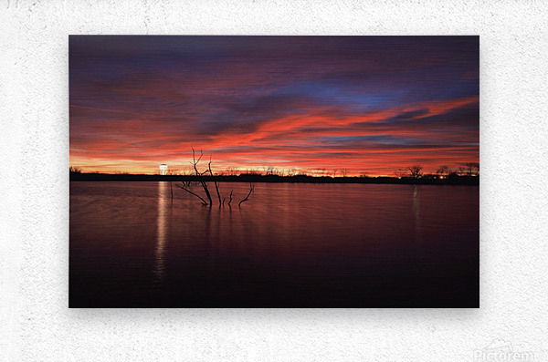 Wellington City Lake Sunset  Metal print