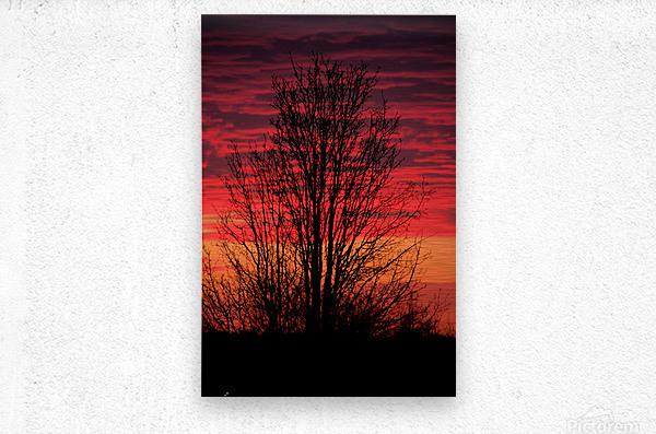 Liberty Missouri Sunset   Metal print