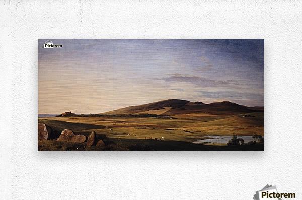 Zealand Landscape  Metal print