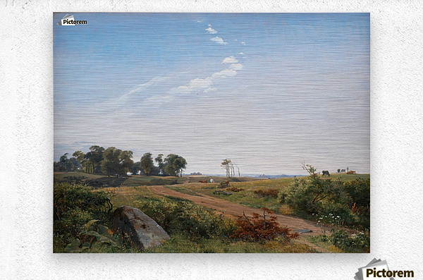 Zealand Landscape. Open Country in North Zealand  Metal print