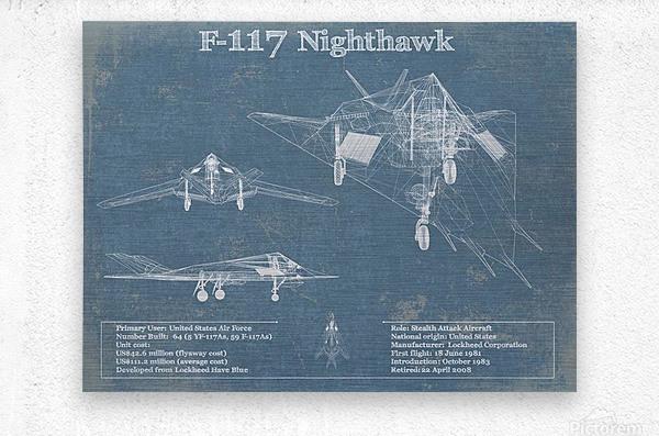 nighthawk_1601185188.2092  Metal print