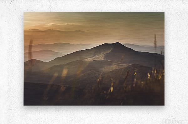 Yellow hills  Metal print