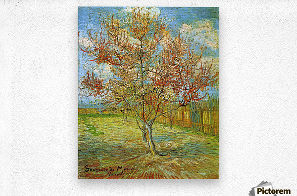 Pink Peach Tree in Blossom Reminiscence of Mauve by Van Gogh  Metal print