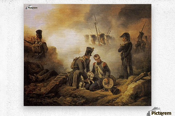 The Dog of the Regiment Wounded  Metal print