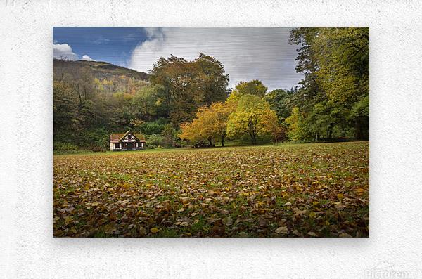 Autumn at Craig-y-Nos Country park   Metal print