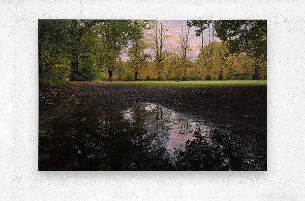 Autumn reflections in a field  Metal print