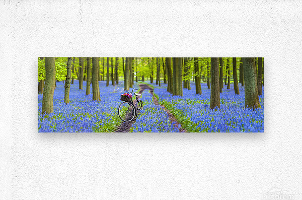 Bicycle in spring forest  Metal print