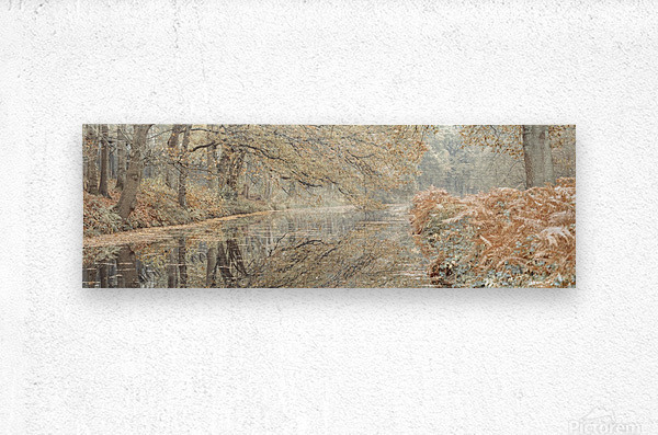Canal through a forest  Metal print