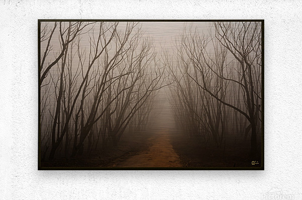after the fire  Metal print
