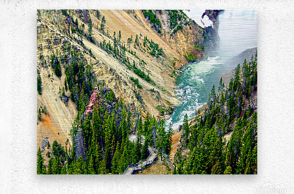 Mighty Yellowstone 3 - Grand Canyon of the Yellowstone River - Yellowstone National Park  Metal print
