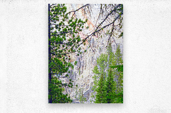 Mighty Yellowstone 4 - Grand Canyon of the Yellowstone River - Yellowstone National Park  Metal print
