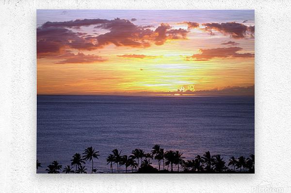 Golden Hawaii  Metal print