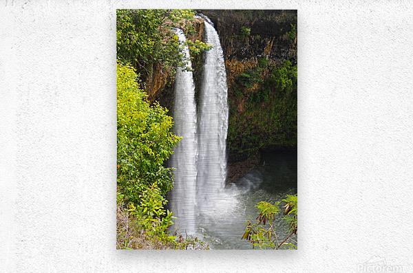 Wild Kauai - 2016 Gallery Artwork of the Year - Portrait-Natural  Metal print
