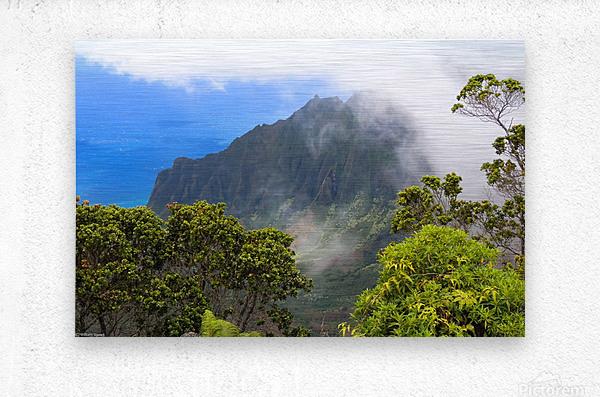 Wild Kauai 3  Metal print