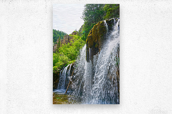 Wild Back Country  Metal print