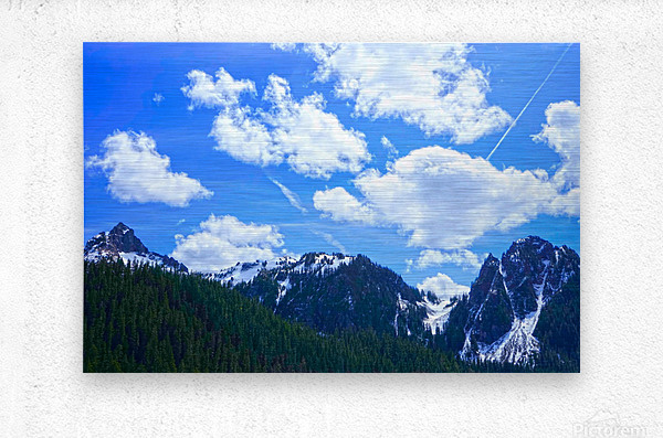 In the Cascade Mountains  Metal print