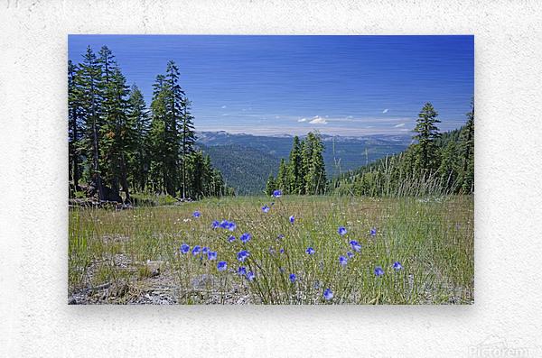 Sierra Nevada in Spring 7 of 8  Metal print