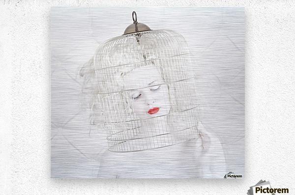birdcage love  Metal print