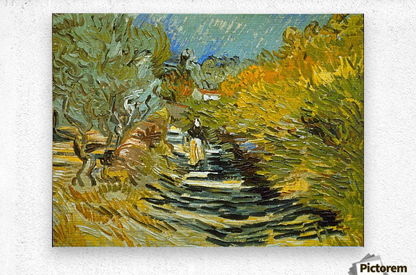 Saint-Remy by Van Gogh  Metal print