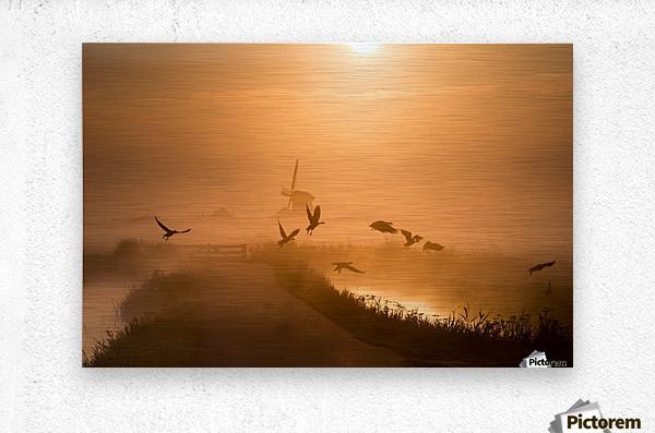 Sunrise Flight  Metal print