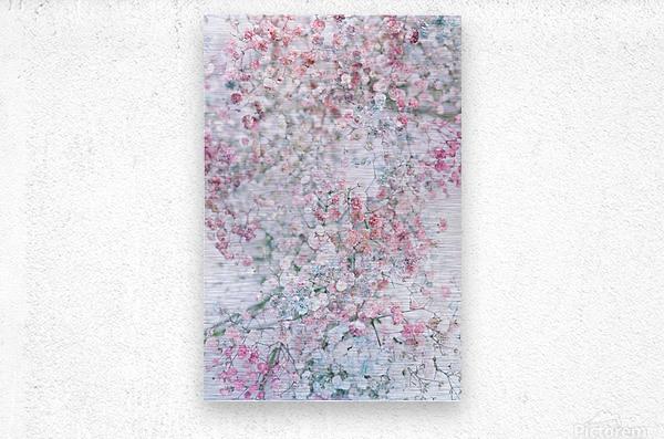Daltana Pastel Floral Dianola  Metal print