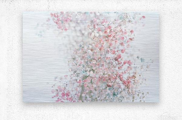 Daltana Pastel Floral Ceiala  Metal print