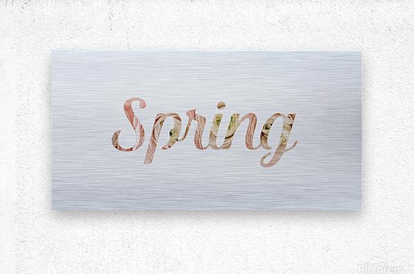 Daltana Spring Drill  Metal print
