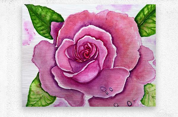 Magnificent Rose  Metal print