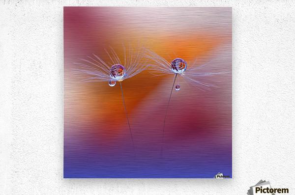 Two Worlds by Juliana Nan   Metal print